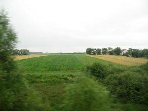 Utsikt frå toget